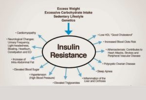 The Effects of Insulin Resistance